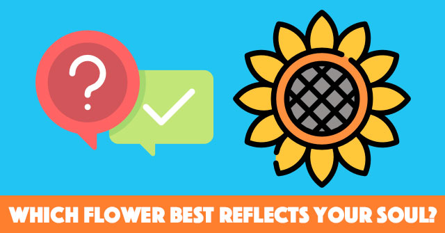 Which Flower Best Reflects Your Soul?