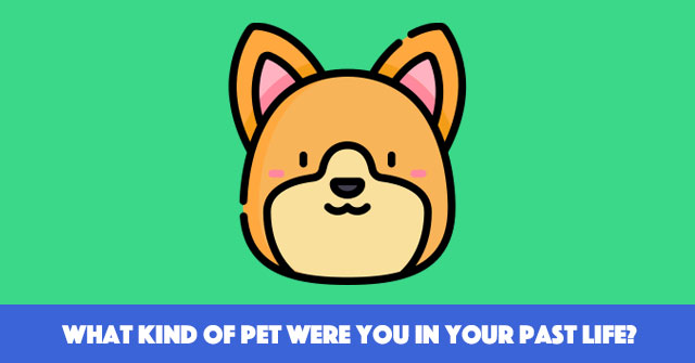 What Kind Of Pet Were You In Your Past Life?
