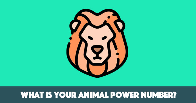 What Is Your Animal Power Number?